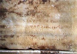 Delphichymn Tablet